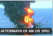 The environmental effects of an oil spill - Advanced Audio English Conversation Lessons