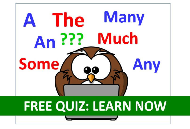 Free Quiz To Learn How To Use English Articles A An The Some Any Much Many