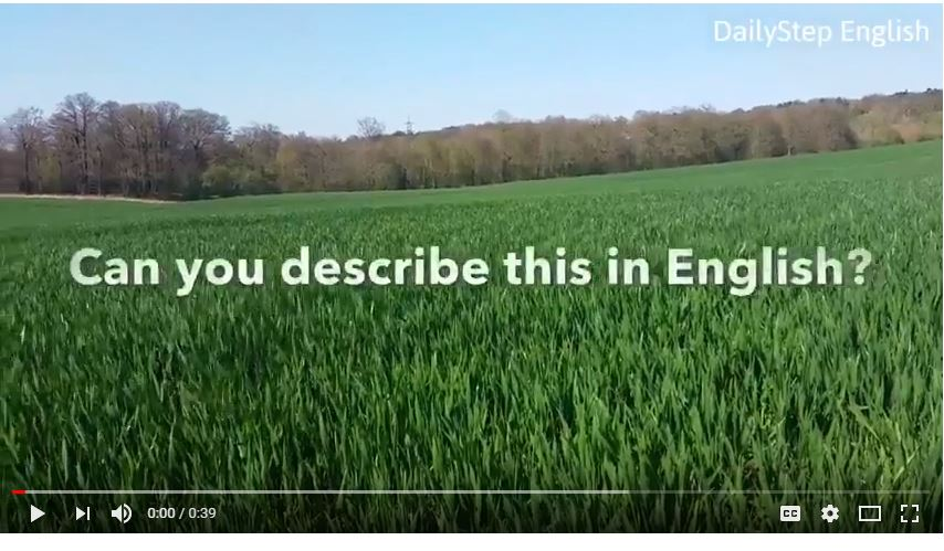 How To Describe Grass Blowing In The Wind - Free Video English Lesson
