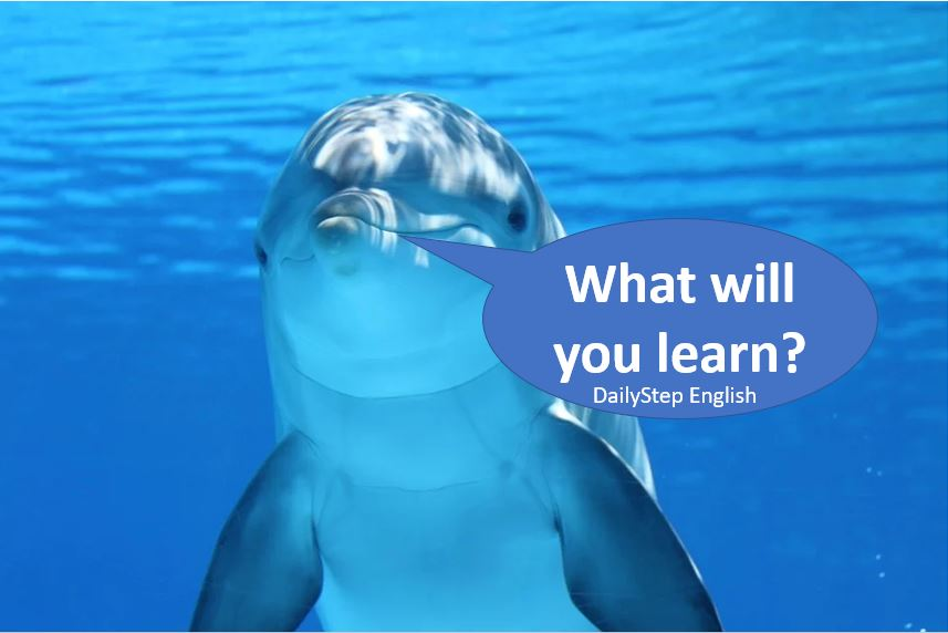 What will you learn on DailyStep English